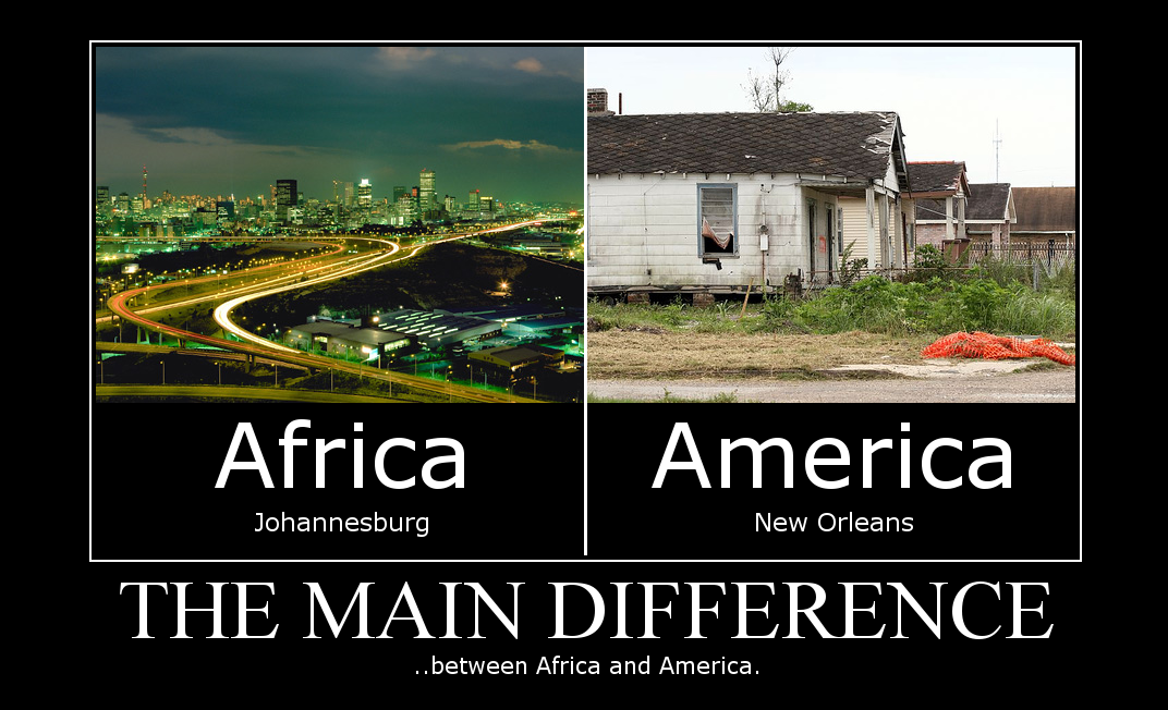 71274c8fcca the main difference between africa and america - TitaniumTeddyBear