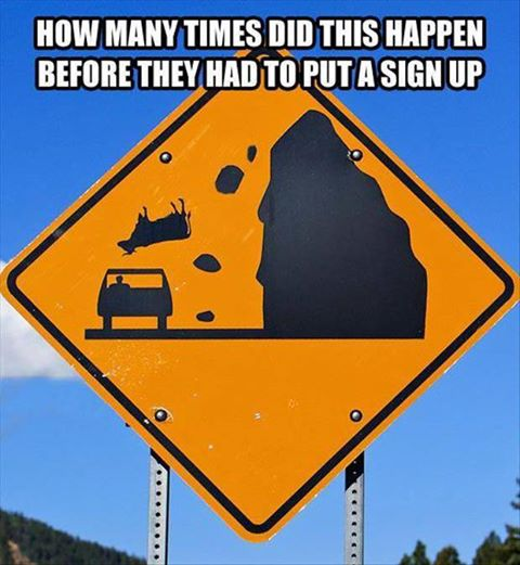 how many times cow falling sign